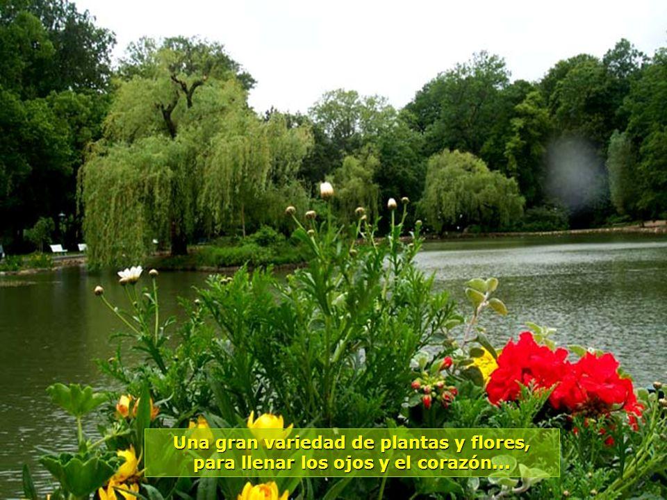 www.vitanaoblepowerpoints.net Áreas para descanso y recreación, en sus lagos, con pequeños barcos y todo muy florido...
