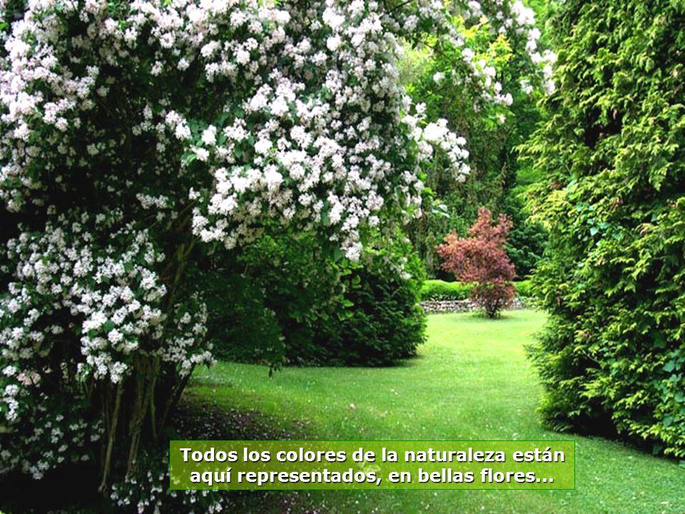 www.vitanaoblepowerpoints.net Pequeños lagos y riachos, entre las flores y árboles, con muchos pájaros, un verdadero apartado de paz y de tranquilidad
