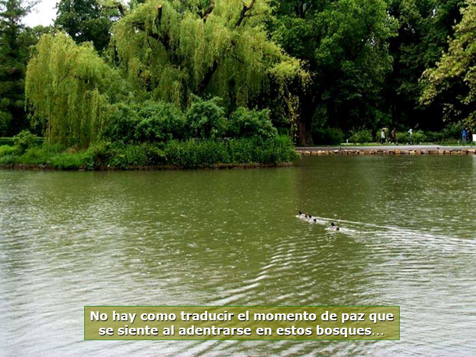 www.vitanaoblepowerpoints.net Estatuas, jardines, bosques, lagos, riachos, todo se mezcla en un solo lugar, en perfecta armonía...