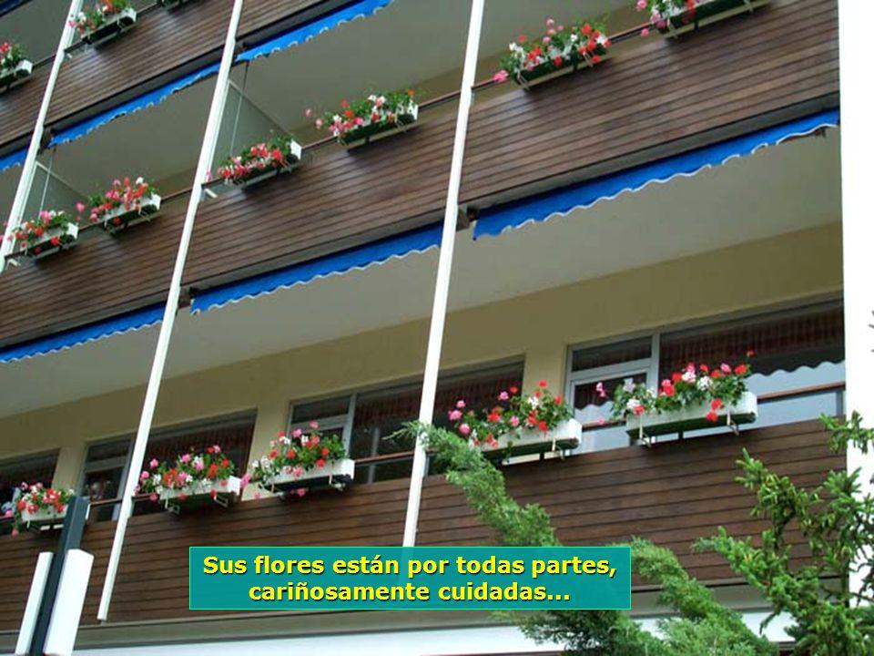 www.vitanaoblepowerpoints.net Enclavada en medio de los Bosques de Viena, Baden es todo un imenso jardin...