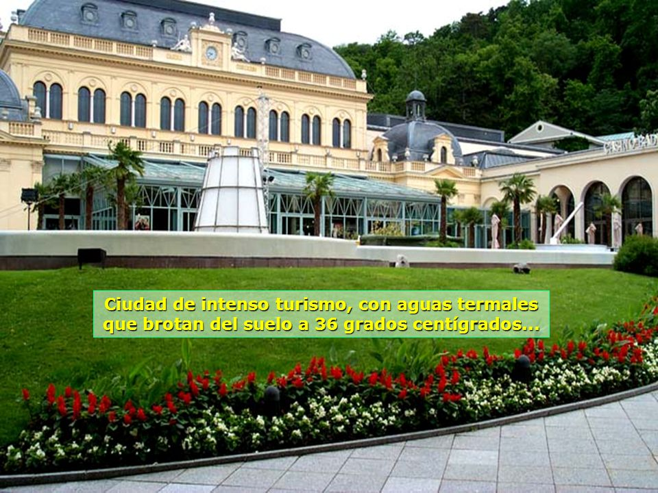 www.vitanaoblepowerpoints.net Sus flores están por todas partes, cariñosamente cuidadas...