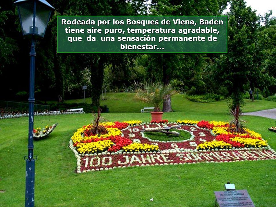 www.vitanaoblepowerpoints.net La pequeña Estancia alberga un bello Casino, localizado dentro de un gran Bosque...