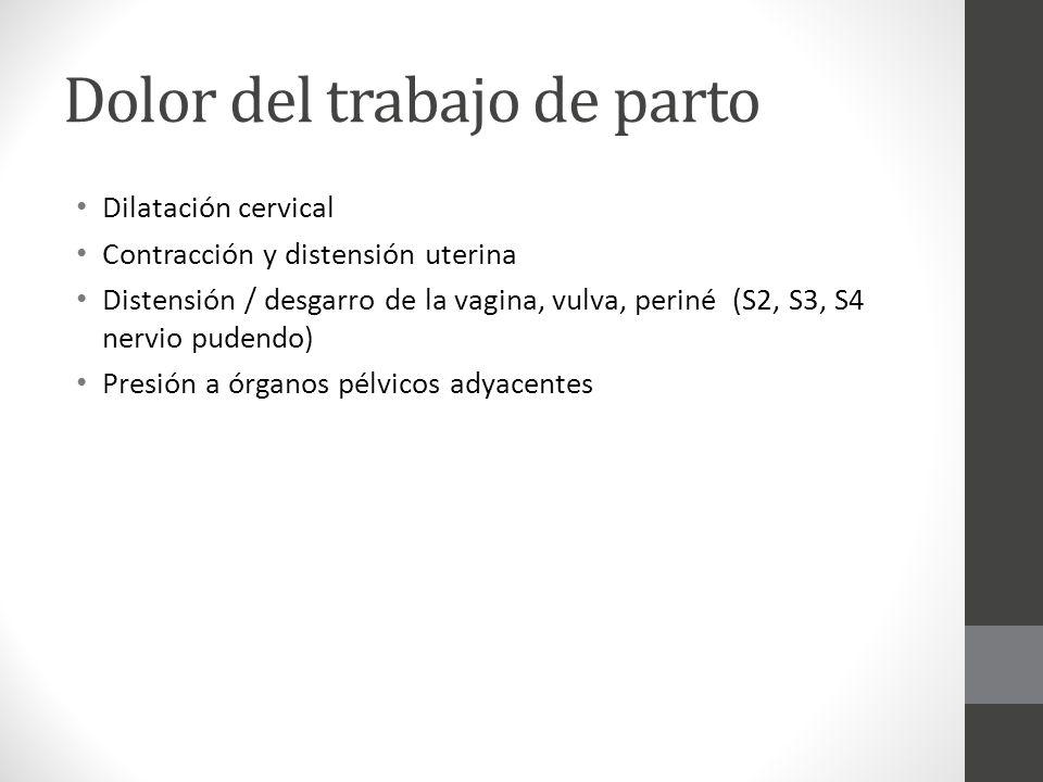 Infiltración local del perineo Indicación. Episiotomía 10 a 20 ml. Lidocaína al 1%