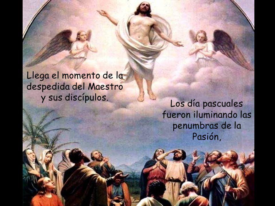 Misión de los discípulos 16 Los once discípulos se fueron a Galilea, al monte que Jesús les había indicado. 17 Al verlo, ellos se postraron, pero algu