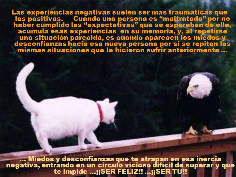 Las experiencias negativas suelen ser mas traumáticas que las positivas.