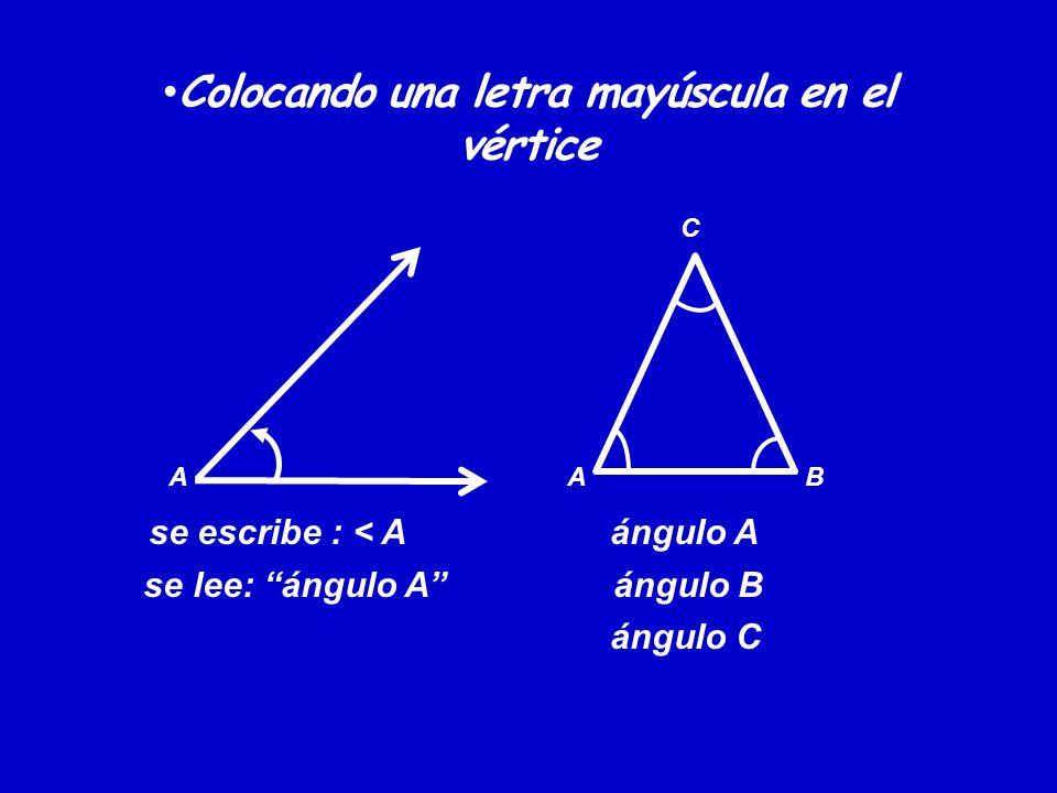 Ángulos trigonométricos Ángulos positivos: son aquellos que se generan haciendo la rotación del lado inicial, en sentido contrario a la rotación de las manecillas de un reloj.
