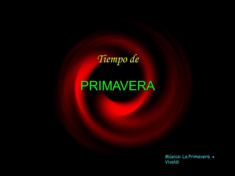 www.vitanoblepowerpoints.net Tiempo de Tiempo de PRIMAVERA PRIMAVERA Música: La Primavera Vivaldi