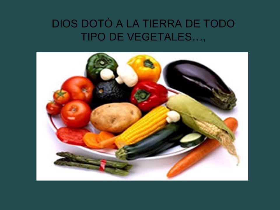 DIOS DOTÓ A LA TIERRA DE TODO TIPO DE VEGETALES…,