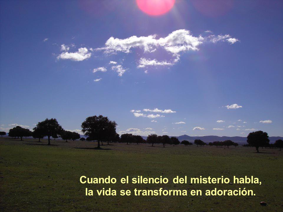 Vita Noble Powerpoints Cuando el silencio del amor habla, la vida se hace comunión.