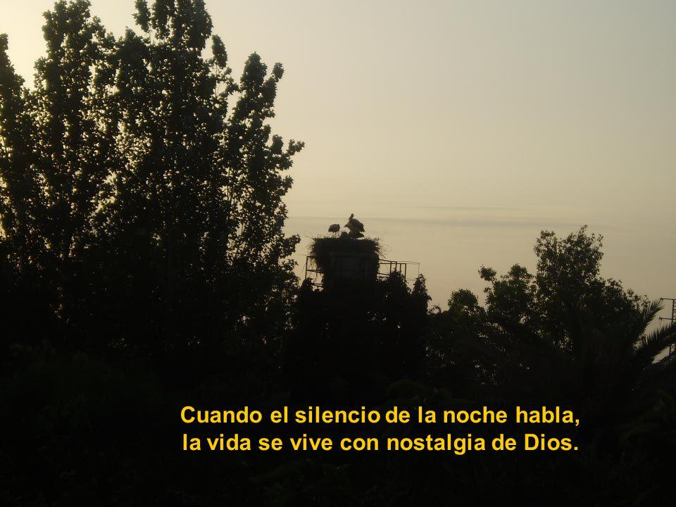Vita Noble Powerpoints Cuando el silencio del misterio habla, la vida se transforma en adoración.