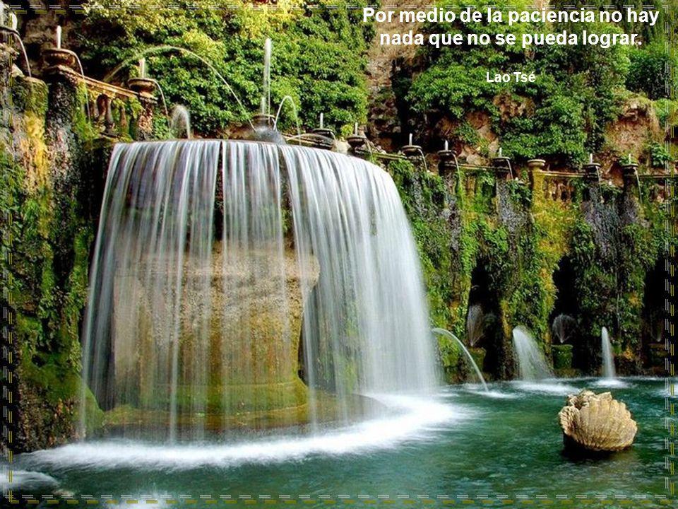 www.vitanoblepowerpoints.net Por medio de la paciencia no hay nada que no se pueda lograr. Lao Tsé