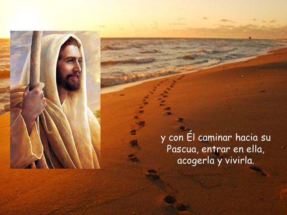 El fin de la vida es realizar el plan que Dios nos confió a todos y a cada uno, encontrarse con Jesús,
