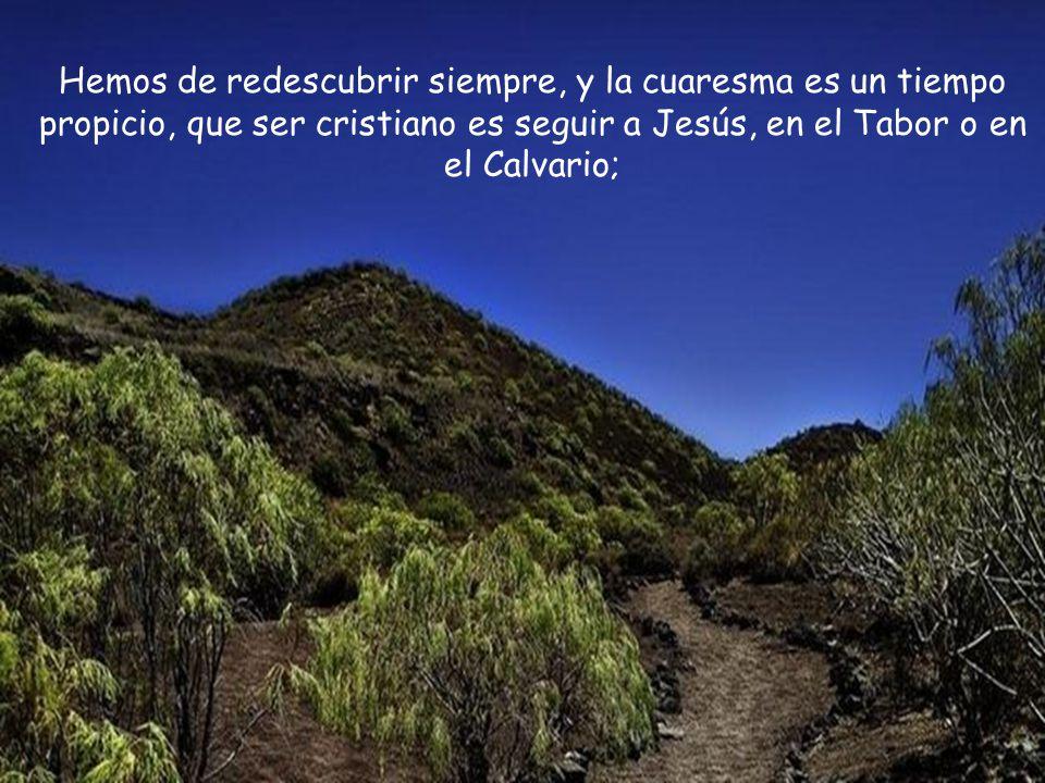Nuestra condición de cristianos no nos exime de ningún dolor, no nos evita ninguna fatiga, no nos desgrava ante ningún impuesto.