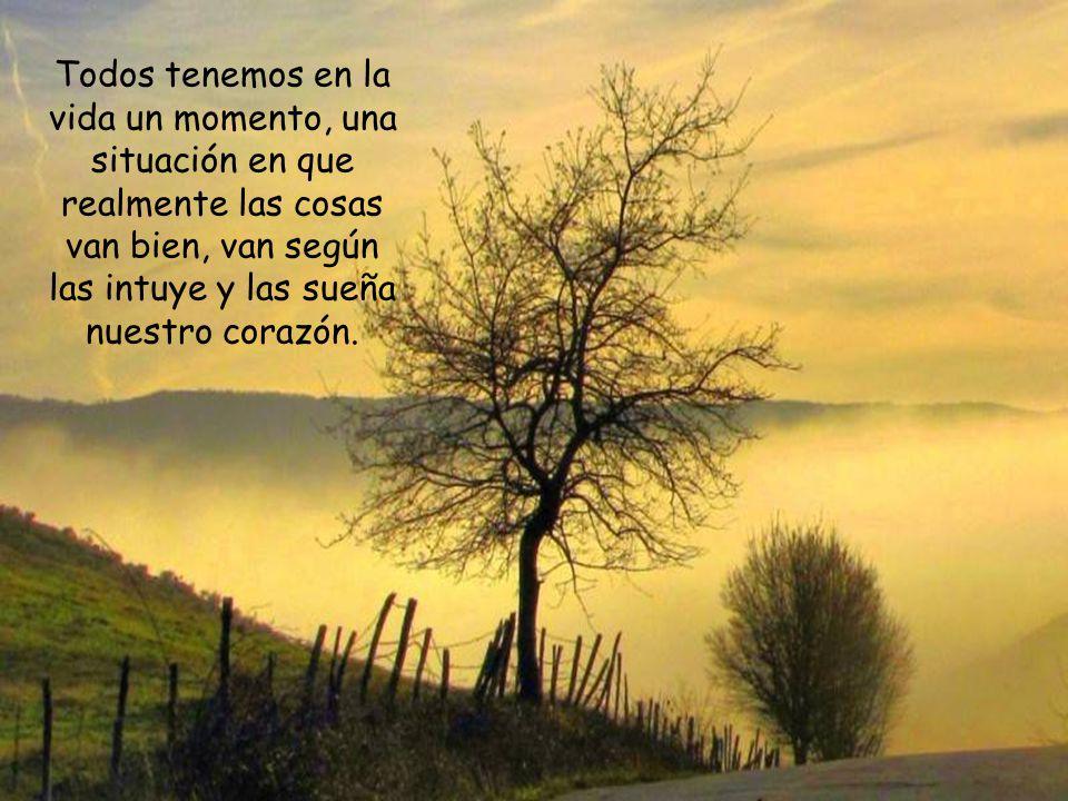 El fin de la vida, de toda vida -incluida la cristiana-, no es encontrar un nido agradable, ni hallar un paraíso libre de impuestos y pesares.
