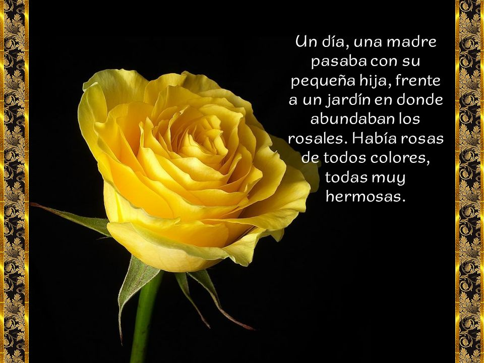 Un día, una madre pasaba con su pequeña hija, frente a un jardín en donde abundaban los rosales.