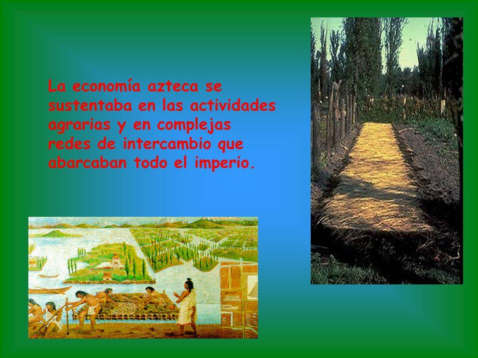 Los dioses más importantes eran: Tezcatlipoca, Quetzacóatl, Huitzilopotchli, Tlatoc y Chalchihutlicue. La religión ocupaba el centro de la vida azteca