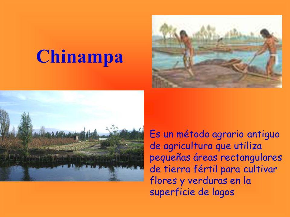 La economía azteca se sustentaba en las actividades agrarias y en complejas redes de intercambio que abarcaban todo el imperio.