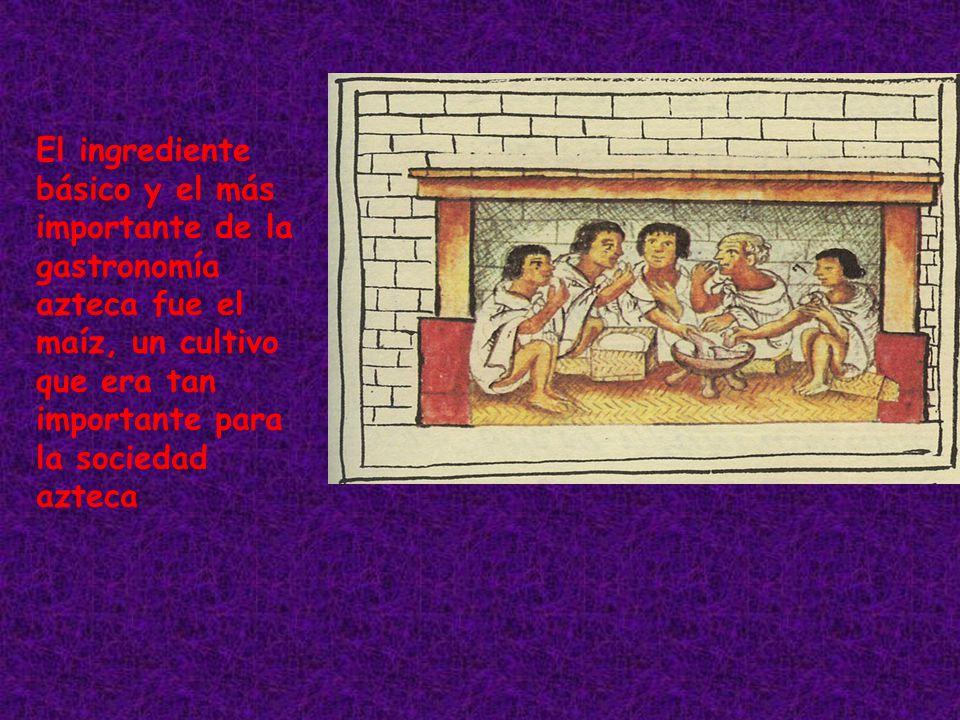 El ingrediente básico y el más importante de la gastronomía azteca fue el maíz, un cultivo que era tan importante para la sociedad azteca