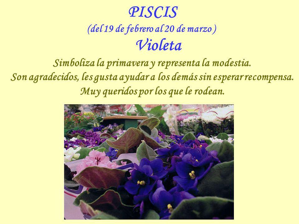 ACUARIO (del 20 de enero al 18 de febrero ) Orquídea Delicada flor, símbolo de la belleza, que transmite confianza en el propio valor. Se dan fácilmen