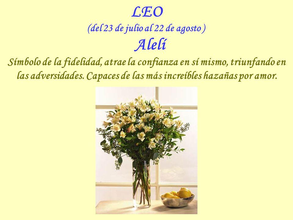 LEO (del 23 de julio al 22 de agosto ) Alelí Símbolo de la fidelidad, atrae la confianza en sí mismo, triunfando en las adversidades.