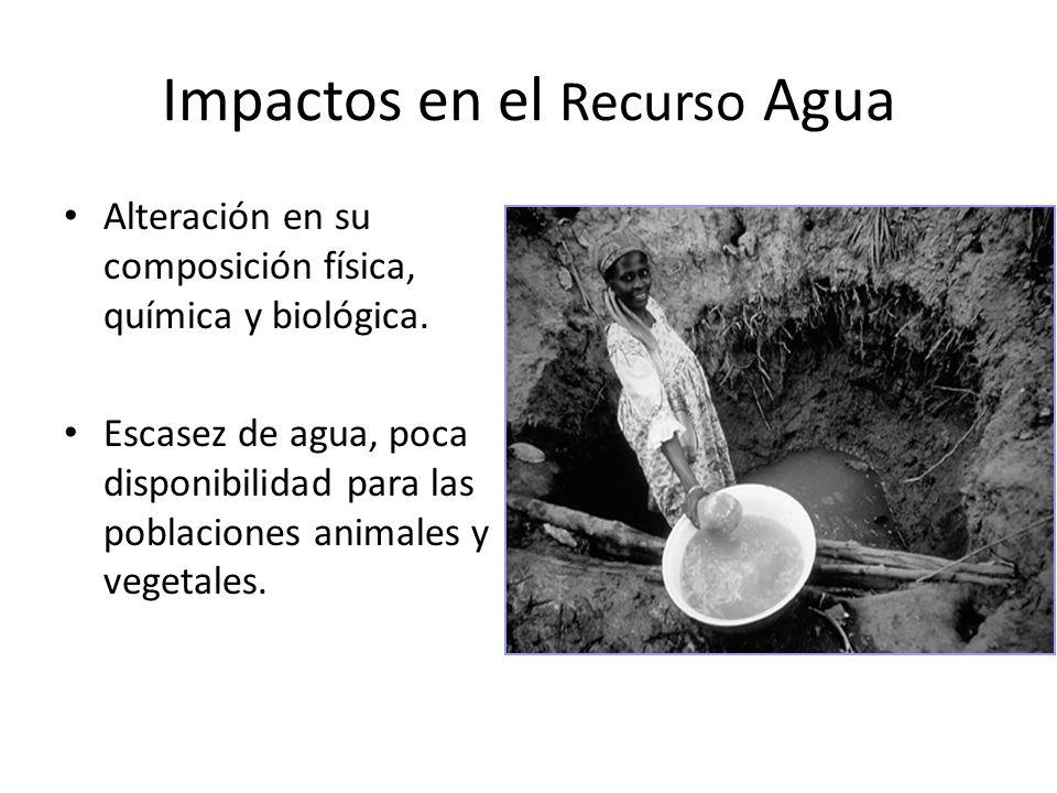 Impactos en el Recurso Agua Alteración en su composición física, química y biológica. Escasez de agua, poca disponibilidad para las poblaciones animal