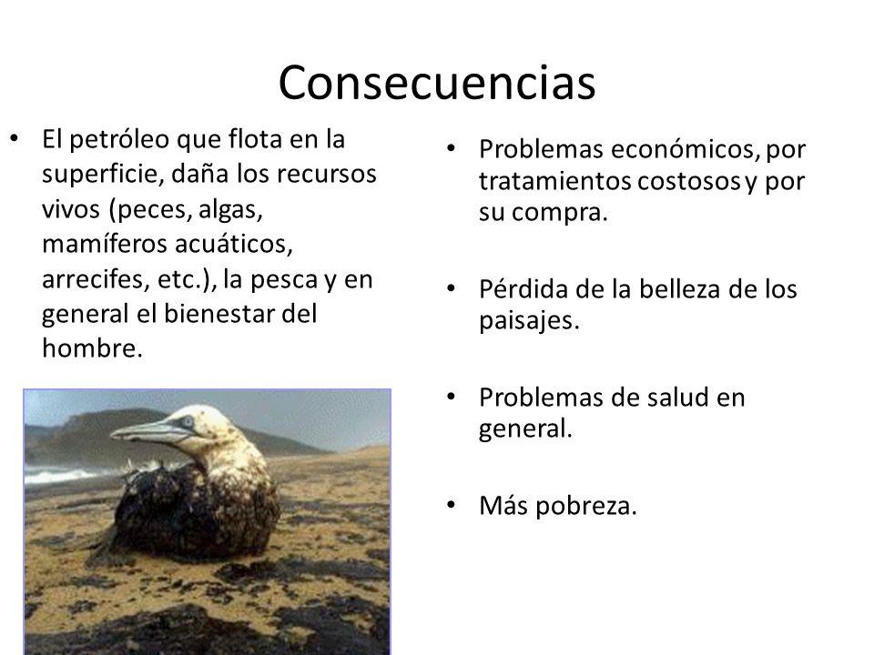 Consecuencias Problemas económicos, por tratamientos costosos y por su compra. Pérdida de la belleza de los paisajes. Problemas de salud en general. M