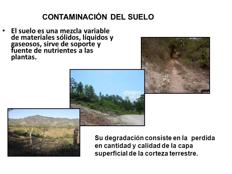 El suelo es una mezcla variable de materiales sólidos, líquidos y gaseosos, sirve de soporte y fuente de nutrientes a las plantas. Su degradación cons