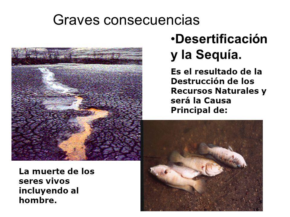Desertificación y la Sequía. Es el resultado de la Destrucción de los Recursos Naturales y será la Causa Principal de: La muerte de los seres vivos in