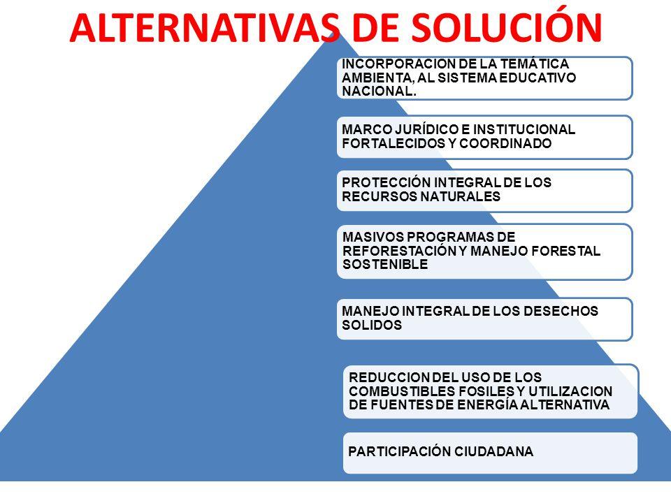 INCORPORACION DE LA TEMÁTICA AMBIENTA, AL SISTEMA EDUCATIVO NACIONAL. MARCO JURÍDICO E INSTITUCIONAL FORTALECIDOS Y COORDINADO PROTECCIÓN INTEGRAL DE