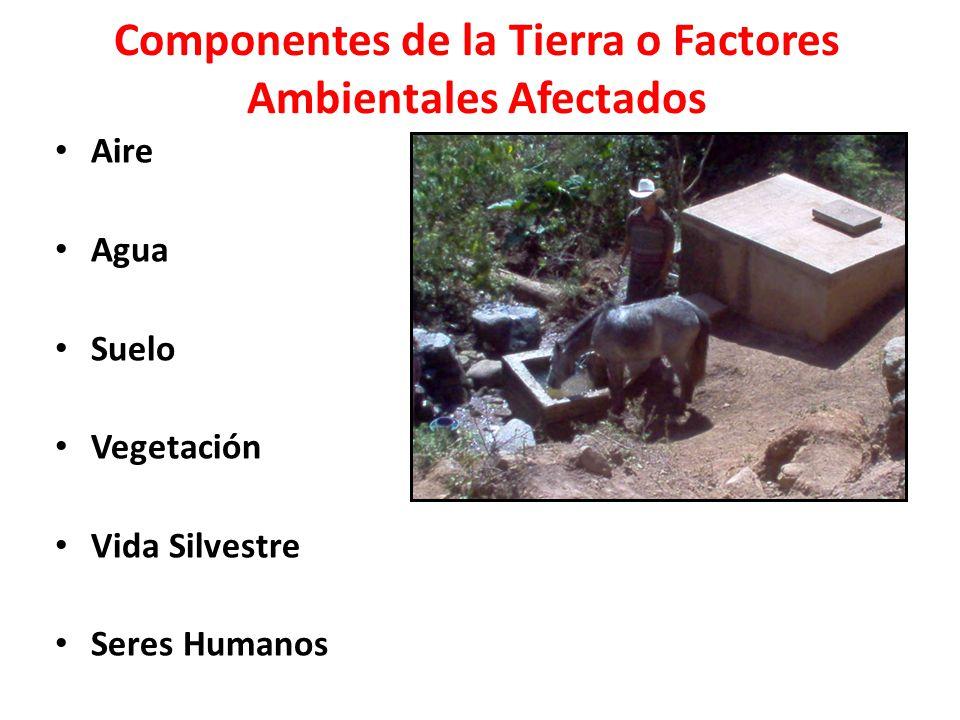 Componentes de la Tierra o Factores Ambientales Afectados Aire Agua Suelo Vegetación Vida Silvestre Seres Humanos