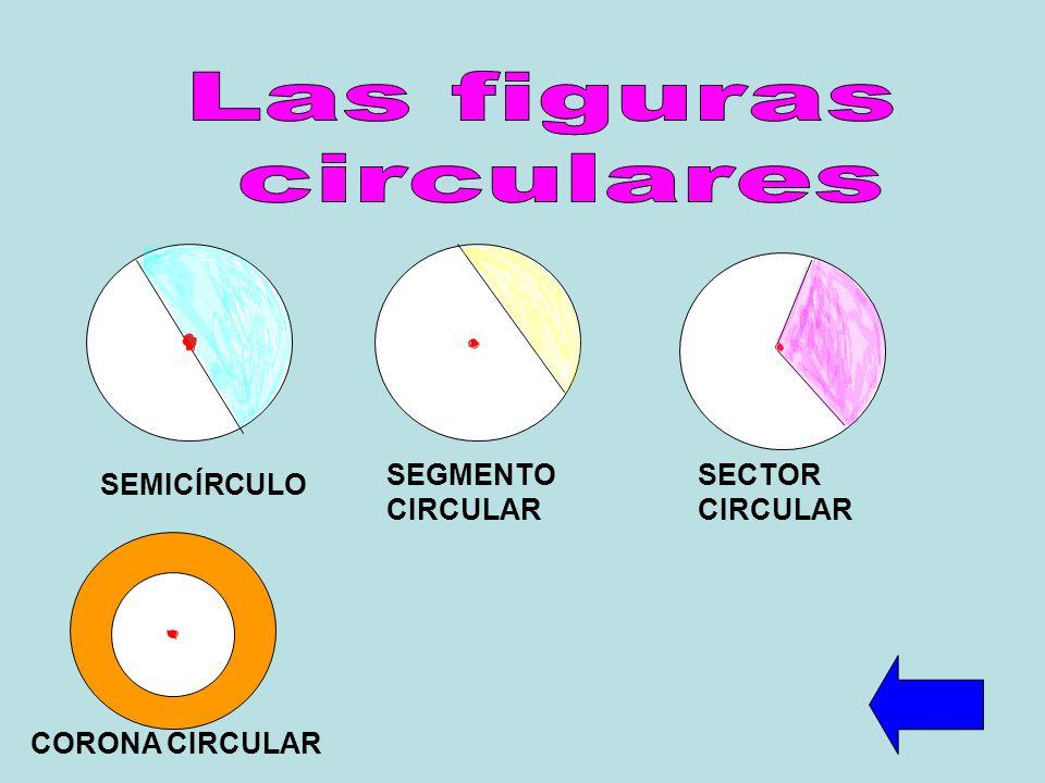 SEMICÍRCULO SEGMENTO CIRCULAR SECTOR CIRCULAR CORONA CIRCULAR