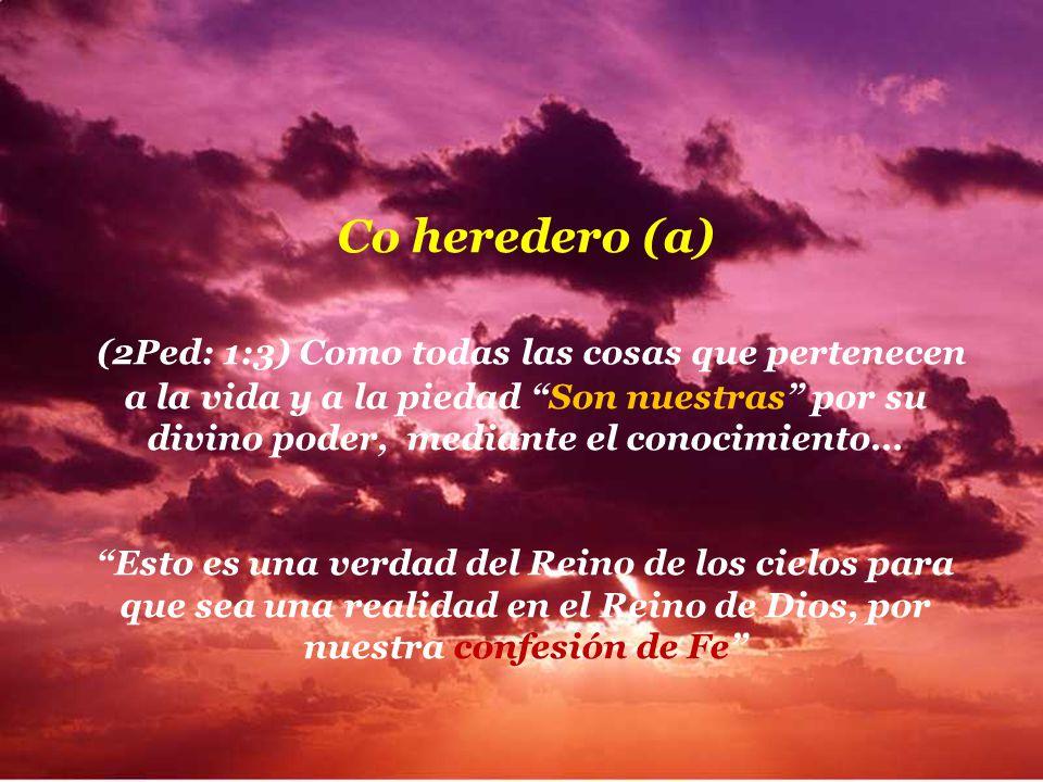 Heredero (a) Es la persona que por testamento o por ley recibe toda o parte de una herencia // Es el dueño de una heredad // Es la persona que present