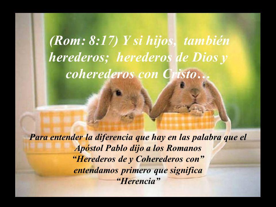 El Objetivo que tenemos como… Co herederos Espirituales Es desarrollarnos, Crecer, es sacar a flote o despertar la medida de Fe que está en cada uno de Nosotros los escogidos de Dios; somos la Amada esposa de Jesucristo, el reflejo mismo de Dios, para ser manifestado en esta tierra de bendición donde nos movemos y no solo para nuestra bendición sino también para bendición de los demás.