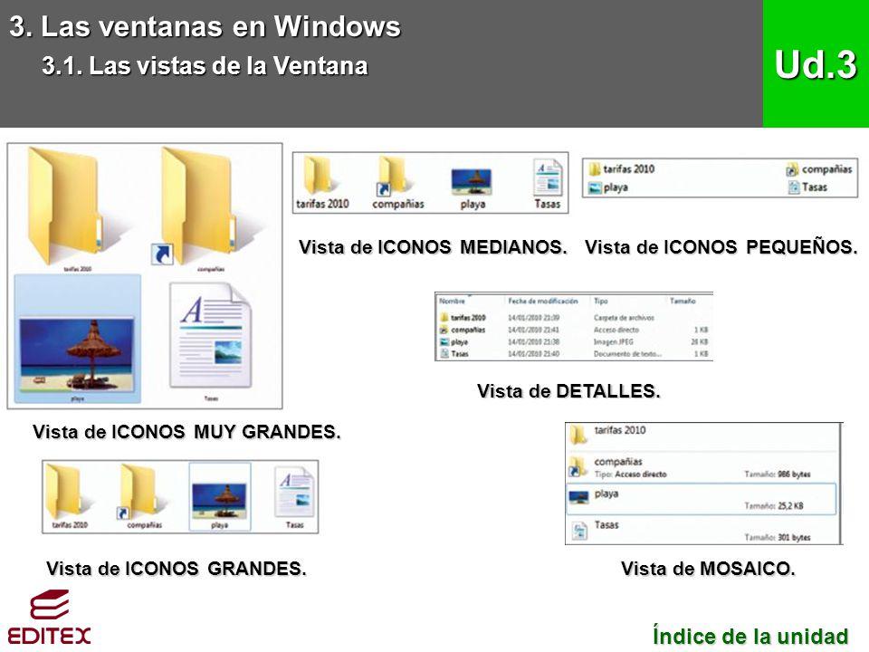 3. Las ventanas en Windows 3.1. Las vistas de la Ventana Ud.3 Índice de la unidad Índice de la unidad Vista de ICONOS MUY GRANDES. Vista de ICONOS GRA
