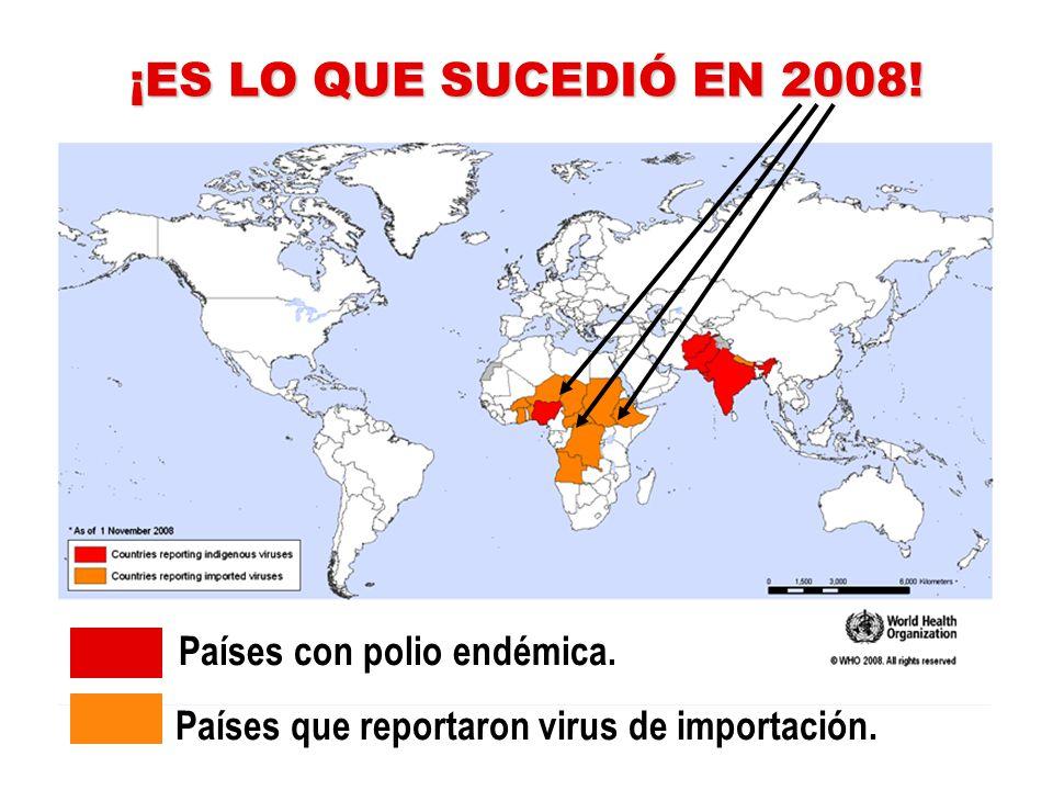 PERO NO ERA SUFICIENTE haber logrado una disminución del 99% de los casos de polio... … porque … … portadores del virus podrían trasladarlo rápidament