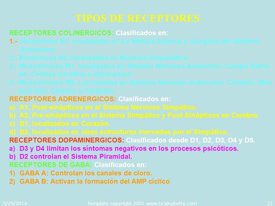 5/29/2014Template copyright 2005 www.brainybetty.com33 TIPOS DE RECEPTORES RECEPTORES COLINERGICOS: Clasificados en: 1.- Nicotinicos N1, localizados e