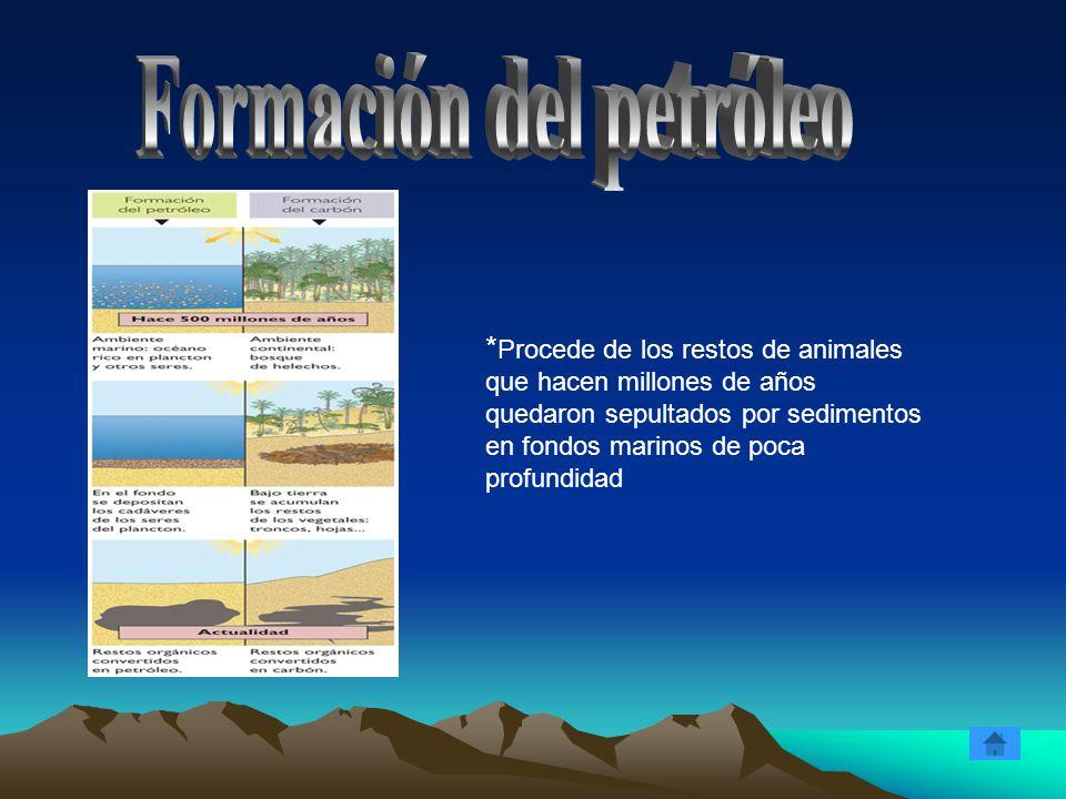 * Procede de los restos de animales que hacen millones de años quedaron sepultados por sedimentos en fondos marinos de poca profundidad