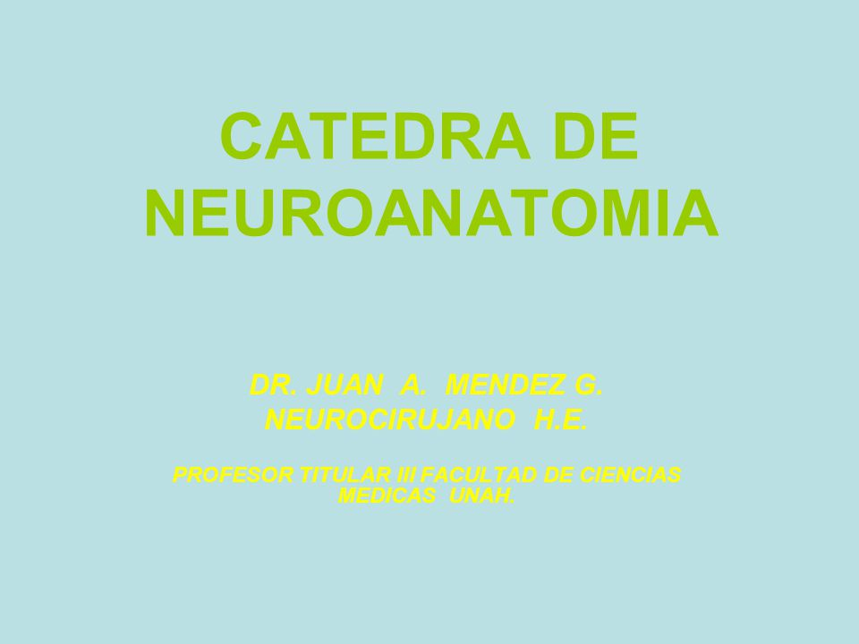 CATEDRA DE NEUROANATOMIA DR.JUAN A. MENDEZ G. NEUROCIRUJANO H.E.