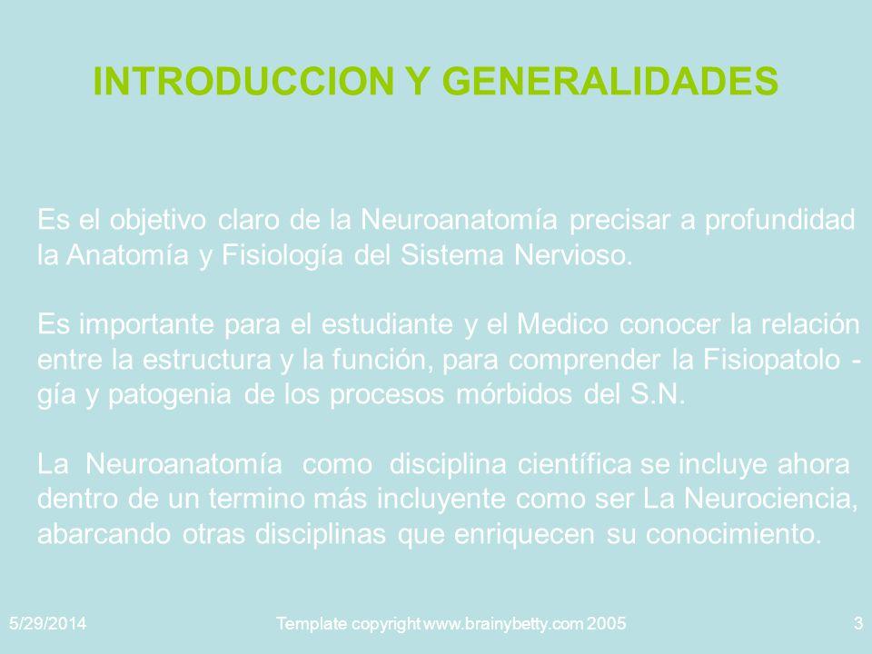 5/29/2014Template copyright www.brainybetty.com 20053 INTRODUCCION Y GENERALIDADES Es el objetivo claro de la Neuroanatomía precisar a profundidad la Anatomía y Fisiología del Sistema Nervioso.