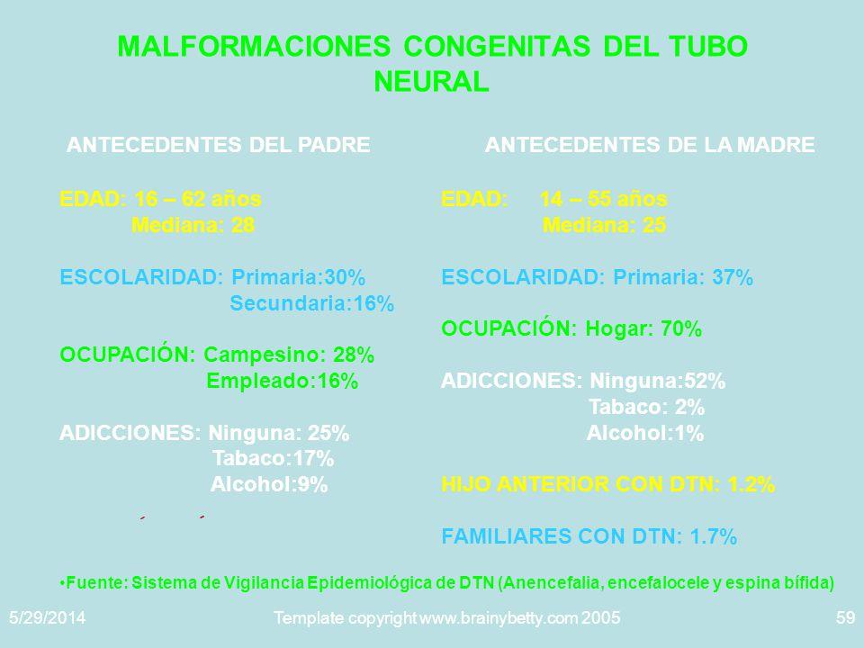 5/29/2014Template copyright www.brainybetty.com 200559 MALFORMACIONES CONGENITAS DEL TUBO NEURAL ANTECEDENTES DEL PADRE EDAD: 16 – 62 años Mediana: 28 ESCOLARIDAD: Primaria:30% Secundaria:16% OCUPACIÓN: Campesino: 28% Empleado:16% ADICCIONES: Ninguna: 25% Tabaco:17% Alcohol:9% ANTECEDENTES DE LA MADRE EDAD: 14 – 55 años Mediana: 25 ESCOLARIDAD: Primaria: 37% OCUPACIÓN: Hogar: 70% ADICCIONES: Ninguna:52% Tabaco: 2% Alcohol:1% HIJO ANTERIOR CON DTN: 1.2% FAMILIARES CON DTN: 1.7% Fuente: Sistema de Vigilancia Epidemiológica de DTN (Anencefalia, encefalocele y espina bífida)
