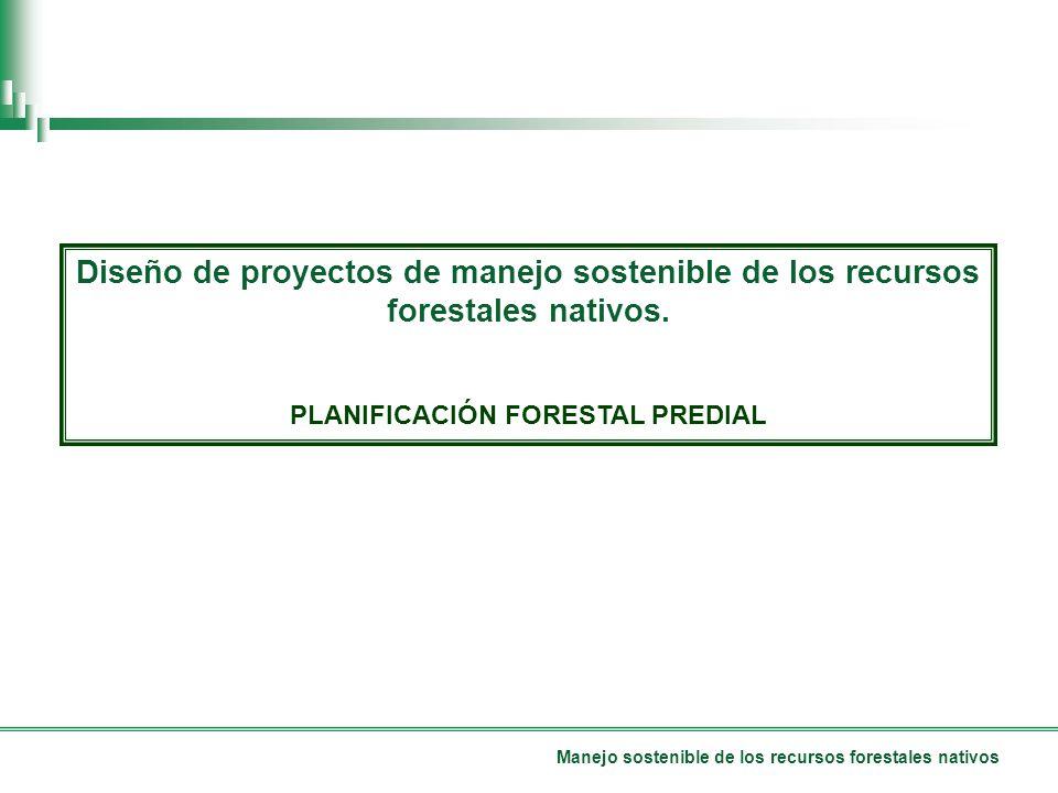 Manejo sostenible de los recursos forestales nativos Diseño de proyectos de manejo sostenible de los recursos forestales nativos.