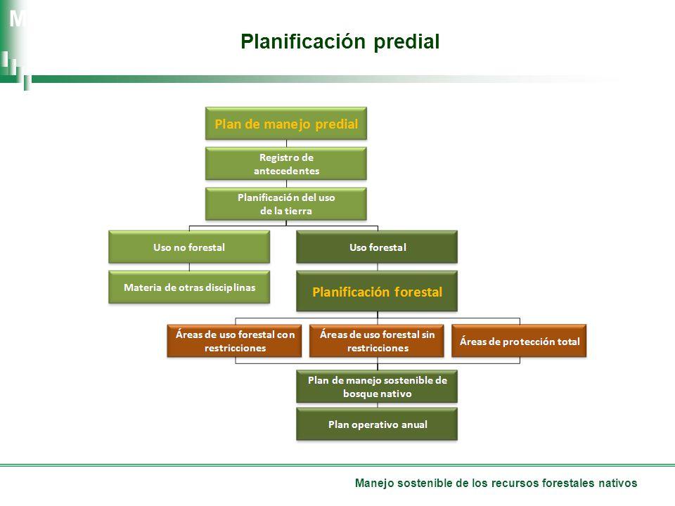 Manejo sostenible de los recursos forestales nativos Planificación predial Manual de Buenas Prácticas