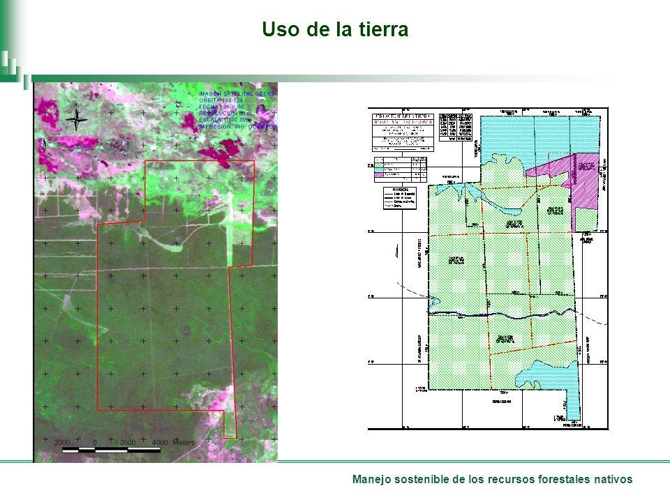 Manejo sostenible de los recursos forestales nativos Uso de la tierra