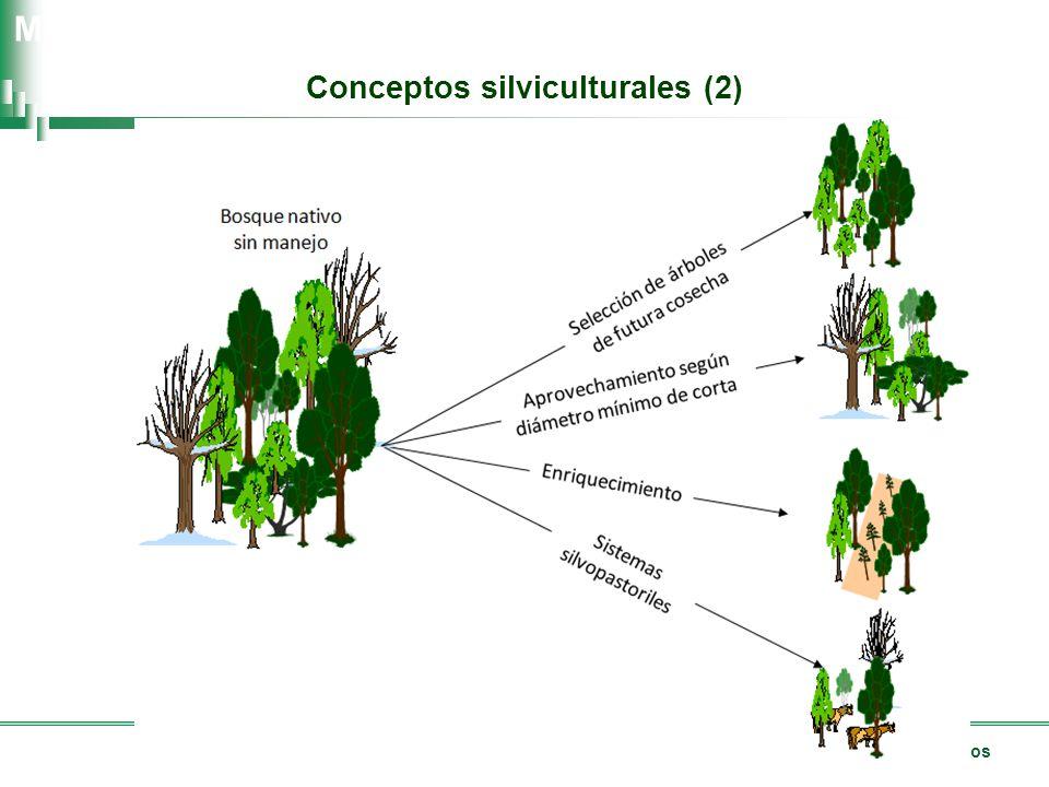 Manejo sostenible de los recursos forestales nativos Manual de Buenas Prácticas Conceptos silviculturales (2)