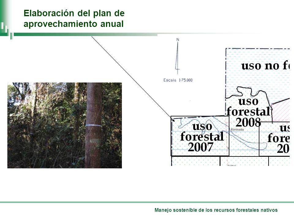 Manejo sostenible de los recursos forestales nativos Elaboración del plan de aprovechamiento anual