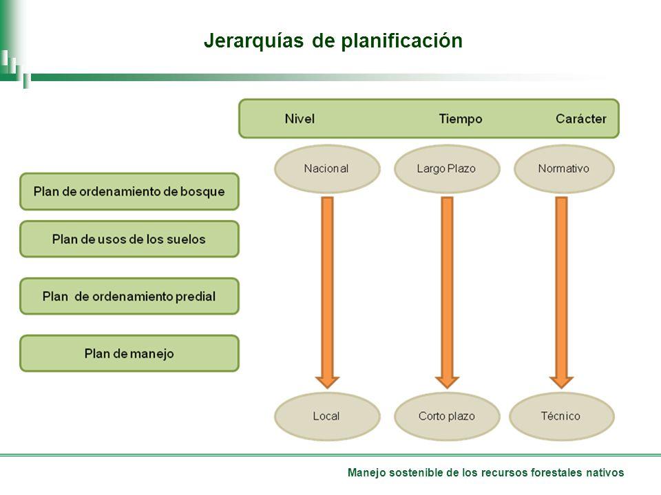 Manejo sostenible de los recursos forestales nativos Jerarquías de planificación