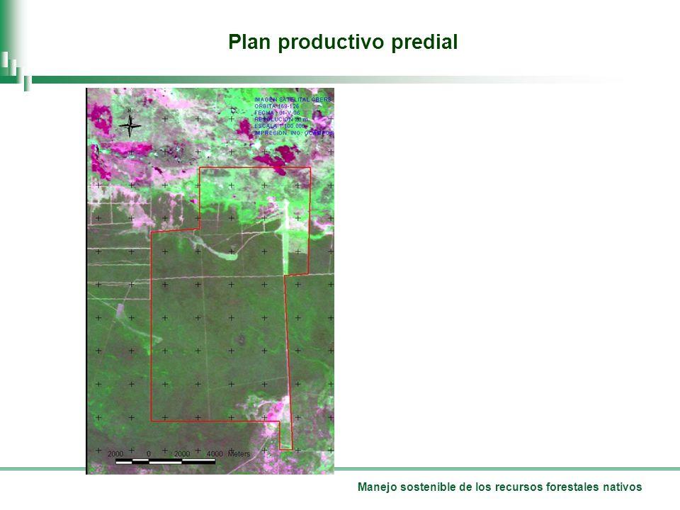 Manejo sostenible de los recursos forestales nativos Plan productivo predial