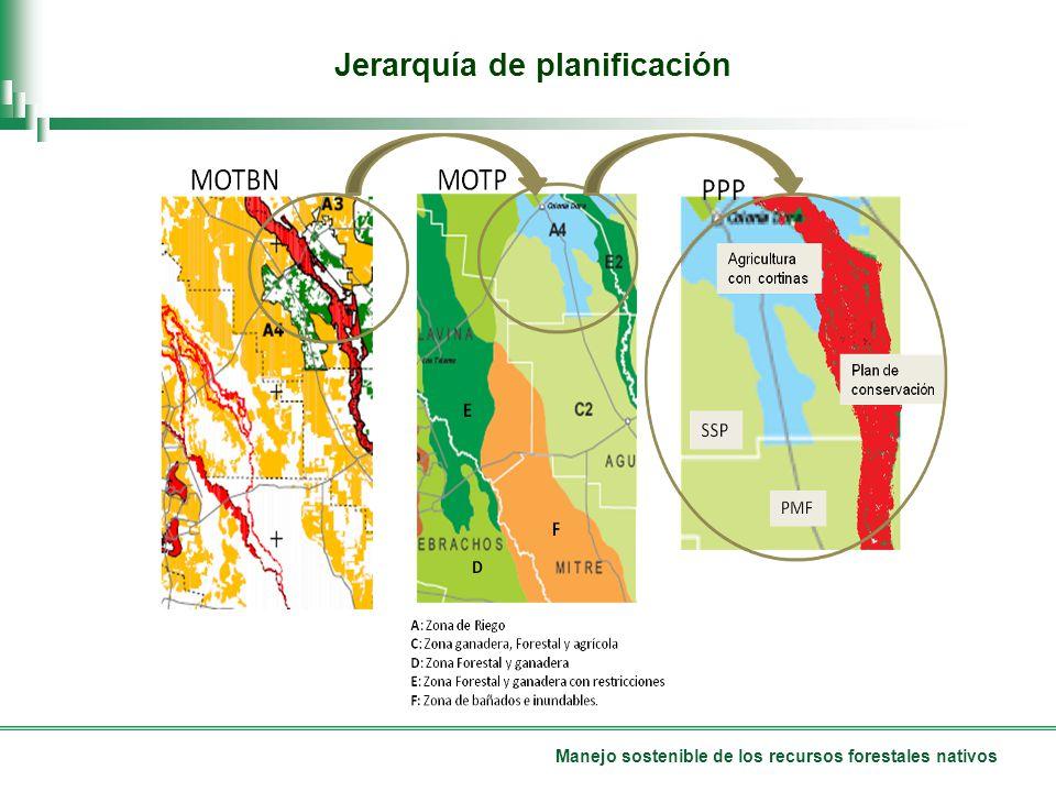 Manejo sostenible de los recursos forestales nativos Jerarquía de planificación