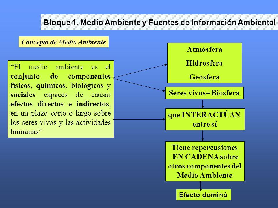 Bloque 1. Medio Ambiente y Fuentes de Información Ambiental Concepto de Medio Ambiente El medio ambiente es el conjunto de componentes físicos, químic