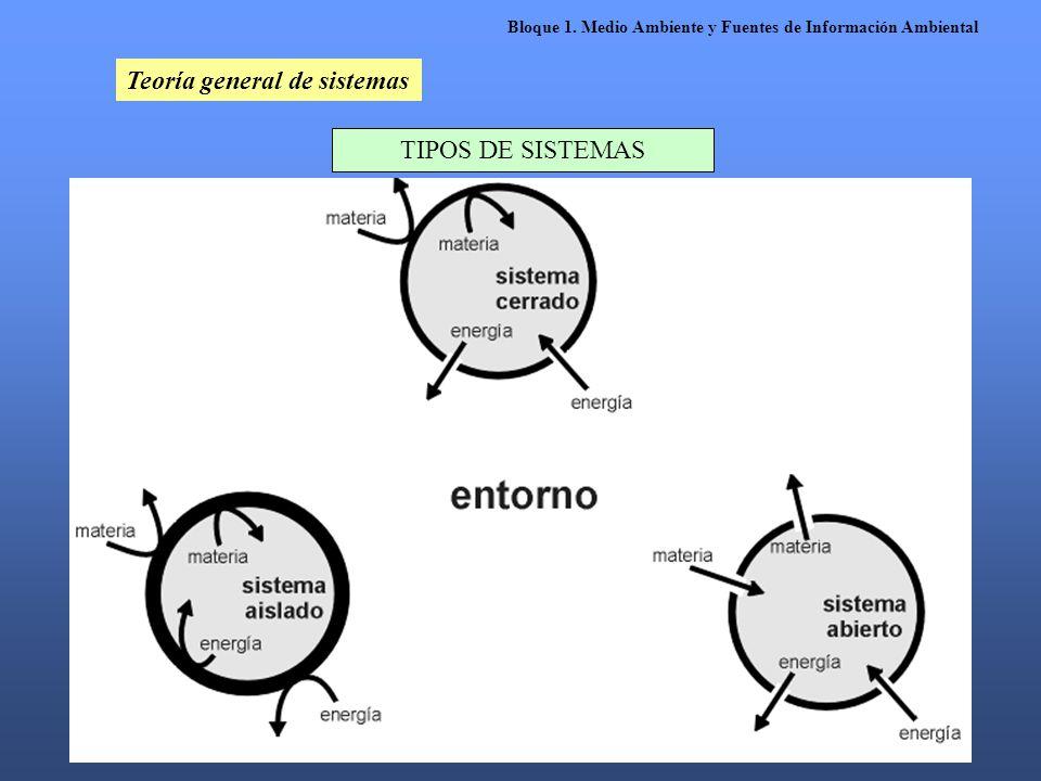 Teoría general de sistemas TIPOS DE SISTEMAS Bloque 1. Medio Ambiente y Fuentes de Información Ambiental
